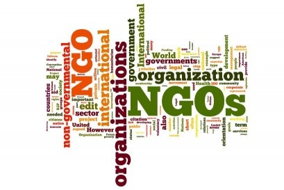 What is NGO (Non-Governmental Organization) and its main uses?