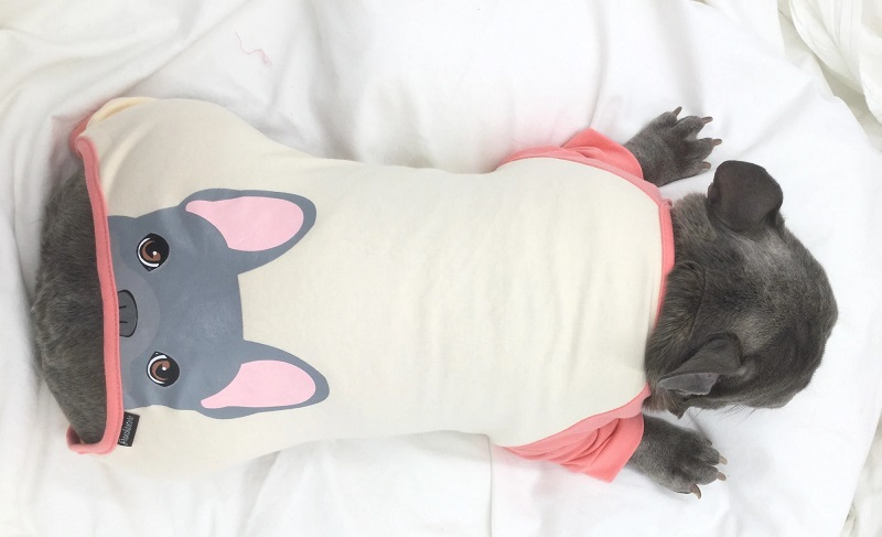 French Bulldog Pajamas For Your Little Companion