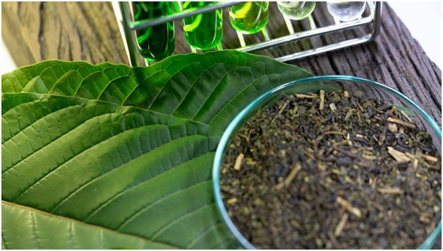 Best Kratom Strains for Pain Relief