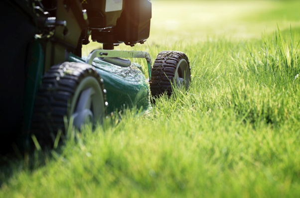 7 Mistakes with Lawn Care to Avoid for New Homeowners