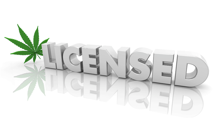 What Do You Need to Get a Cannabis License?