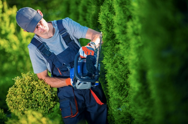 4 Best Landscaping Equipment and Tools You Need to Buy