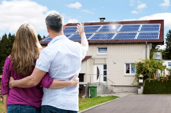 5 Renewable Energy Facts to Save Money and the Environment