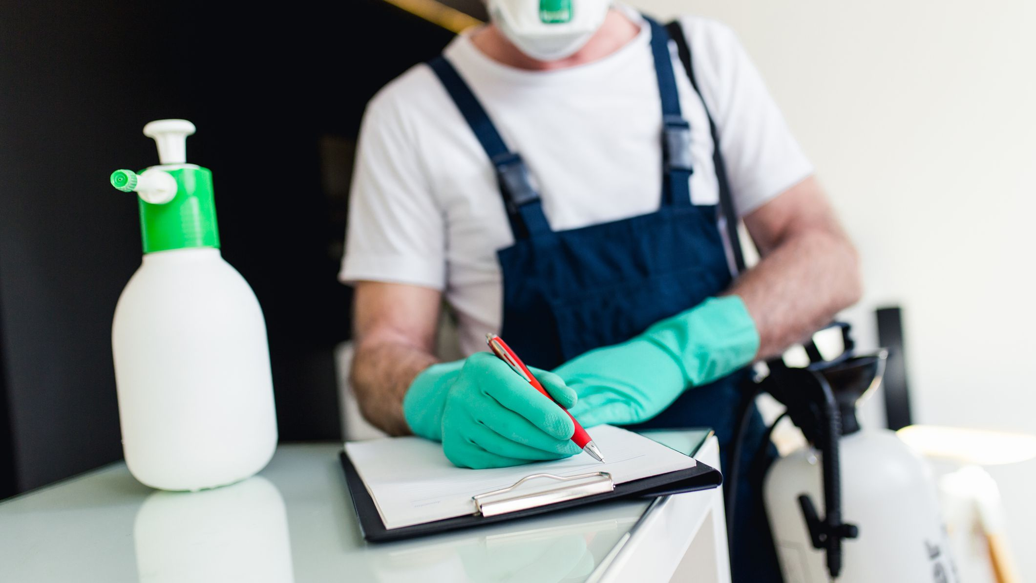 Simple tips for pest control that need to take care
