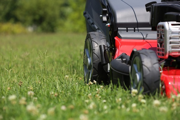 4 Essential Lawn Maintenance Tips Every Homeowner Should Know