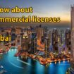Everything you need to know about commercial licenses in Dubai